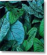 Cool Leafy Green Metal Print