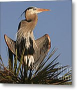 Great Blue Heron Air Conditioning Metal Print