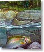 Coolwaters Rainbow Trout Metal Print by Jon Q Wright