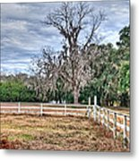 Coosaw - Cloudy Day Metal Print