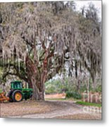 Coosaw Cross Roads With Live Oak Metal Print