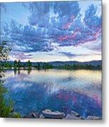 Coot Lake View Metal Print