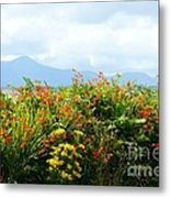 Coppertips On The Dingle Peninsula Metal Print