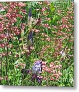 Coral Bells And Irises Metal Print