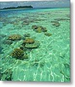 Coral Paradise Metal Print