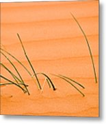 Coral Pink Sands 1 Metal Print by Adam Romanowicz