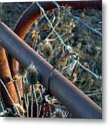 Coralled In Texture Metal Print