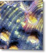 Corals 3 Metal Print