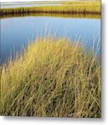 Cordgrass And Marsh, Southern Metal Print