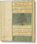 Corinda Tree (carissa Carandas) Metal Print