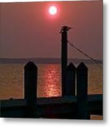Cormorant At Dawn Drying Its Wings Metal Print