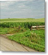 Corn Clouds Sun Rusty Gate Metal Print by Wilma  Birdwell