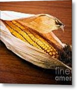 Corn Ear Metal Print