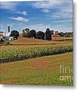 Corn Farmer Metal Print