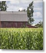 Corn Field And Barn Metal Print