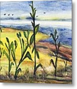 Corn Field By The Sea Metal Print
