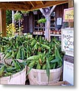 Corn Metal Print by Janice Drew