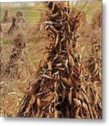 Corn Stalk Bales Metal Print by Marcia Colelli