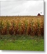 Cornfield And Farmhouse Metal Print