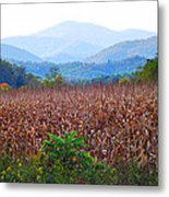 Cornfield In The Mountains Metal Print