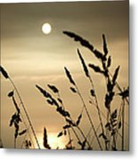 Cornwall Misty Sunset One Metal Print