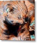 Cosmic Kitty 3 Metal Print