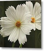 Cosmos And Hearts Metal Print