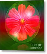 Cosmos Bubble Metal Print