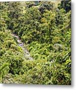 Costa Rica Zip Line View Metal Print