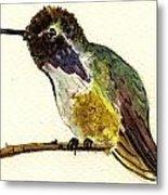 Costa S Hummingbird Metal Print
