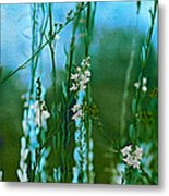 Cottage Garden Three Metal Print
