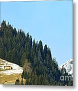 Cottage In Alps Metal Print