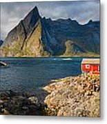 Cottage With A View Metal Print