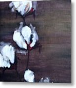 Cotton In Red 2 Metal Print