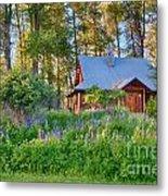 Cottonwood Cottage Spring 2014 Photographs Taken By Omaste Witko Metal Print