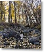 Cottonwood Creek Near Deer Lodge Montana Metal Print