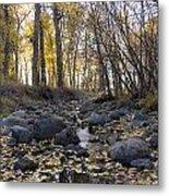 Cottonwood Creek Near Deer Lodge Montana Metal Print by Dana Moyer