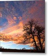 Cottonwood Sky Metal Print