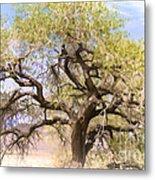 Cottonwood Tree Digital Painting Metal Print