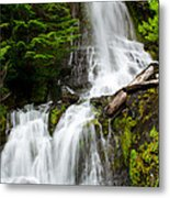 Cougar Falls Metal Print