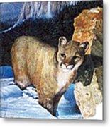 Cougar In Snow Metal Print