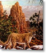 Cougar Metal Print by W  Scott Fenton
