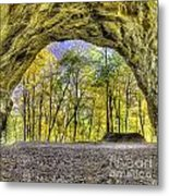 Council Overhang At Starved Rock Metal Print