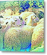 Counting The Sheep But Can't Sleep  Metal Print