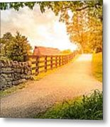 Country Alley Metal Print