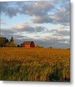 Country Backroad Metal Print