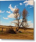 Country Clouds Metal Print