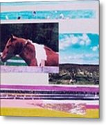 Country Collage 5 Metal Print