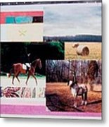 Country Collage 6 Metal Print