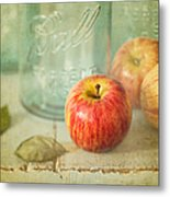 Country Comfort Metal Print by Amy Weiss